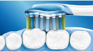 Philips, børstehoved, Premium Plaque, hvid, 4 stk